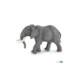 l'elephant d'afrique - 50192
